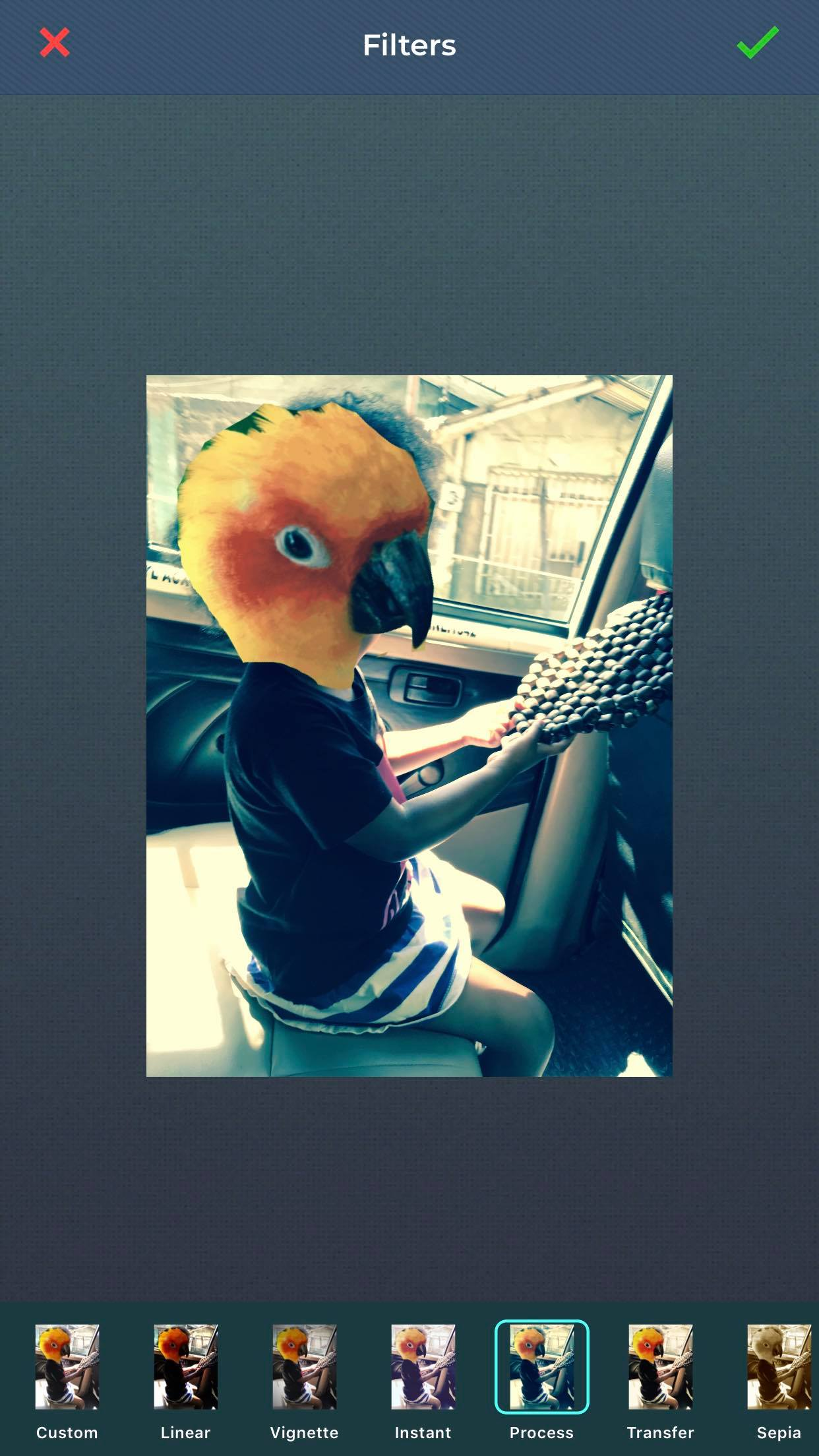 add filter named process on photo of girl with a bird for a head using cut paste photos app